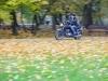 sesja-moto-tarnobrzeg0063