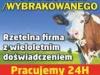 pourazowe3